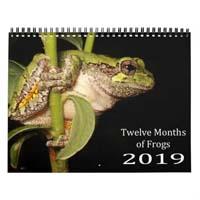Frog Calendar 2019